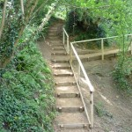 Footpath steps replacement.